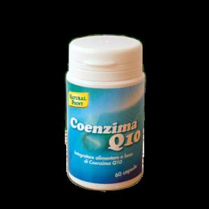 NP-coenzimaQ10 copy