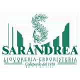 LogoSarandrea160