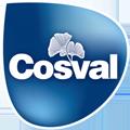 Cosval logo piccolo