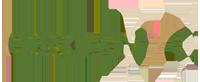cropped-organyc_logo