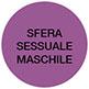 sfera-sessuale-maschile-copy