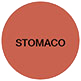 stomaco-copy
