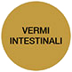 vermi-intestinali-copy