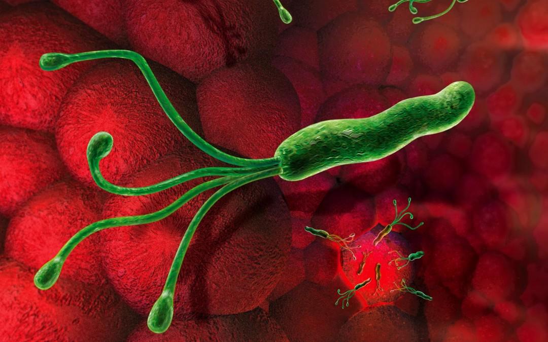 helicobacter-1080x675